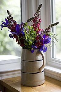 flores-sempre_2S.jpg