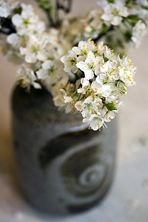 flowers-alisonk_1S.jpg