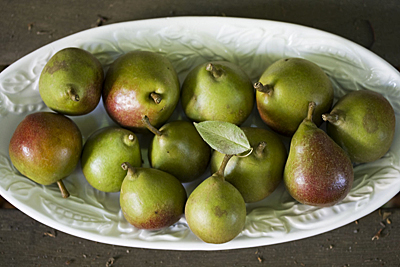 seckel-pear_1S.jpg