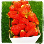 T & Y Strawberry Patch