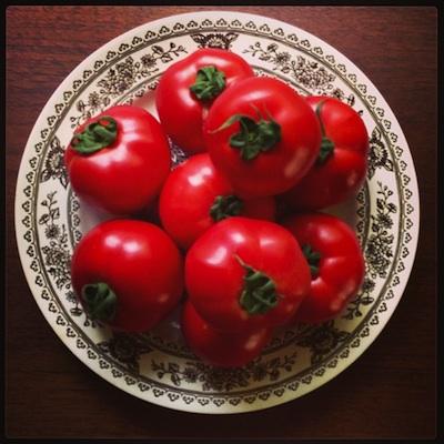 tomates-new1.jpg