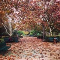 o outono deste ano