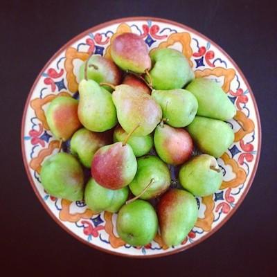 pears-Ria.jpg