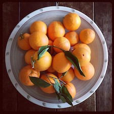 laranjas da Leila