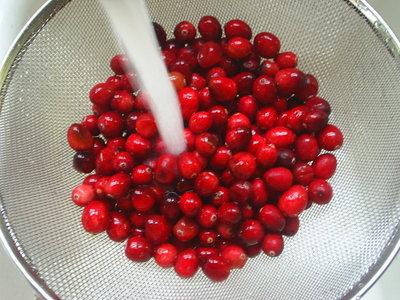 cranberrysauce1.JPG