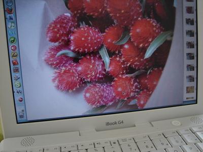 floresdomnercadotake2.JPG