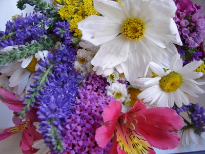 floresvariadas1.jpg