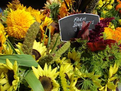 flowersFMSF2.JPG