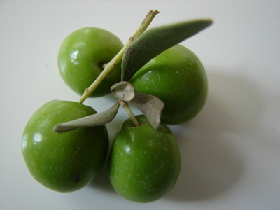 greenolives.JPG