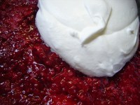 raspberrytrifle3.JPG
