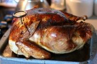 thanksgiving07_3a.jpg