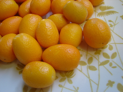 yellowkumquat.JPG