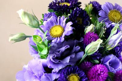 purple_rain_4S.jpg