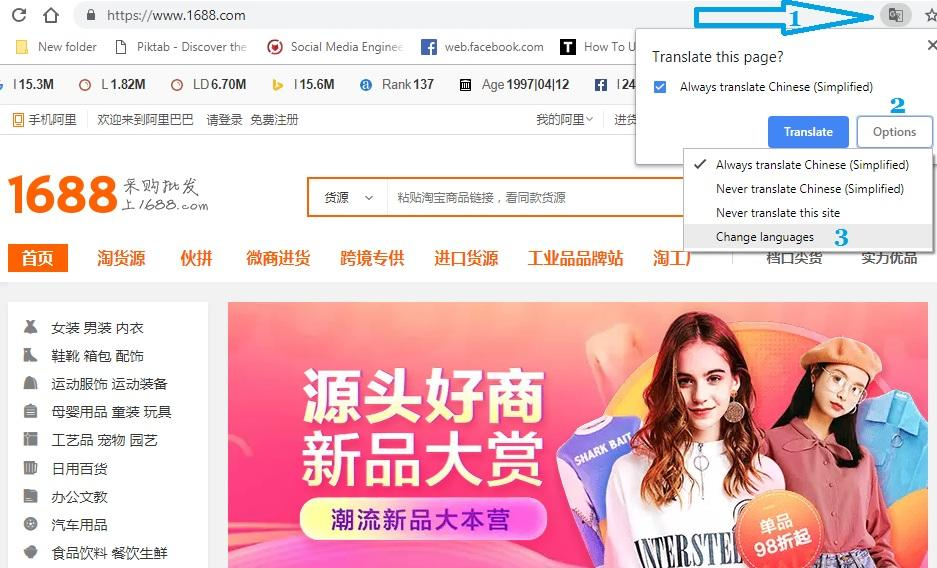 Translate chinese to english website