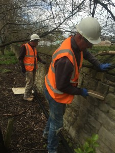 wall mortar 3