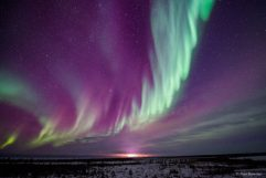 Northern Lights Churchill Wild