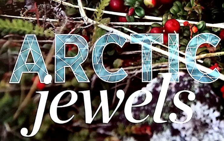 Arctic Jewels. Nourish Magazine photo. Click image to visit their site.