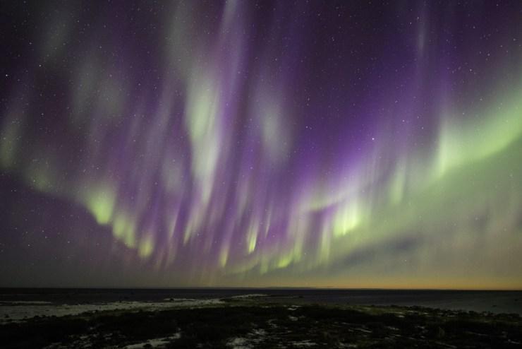 northernlightschurchillwild