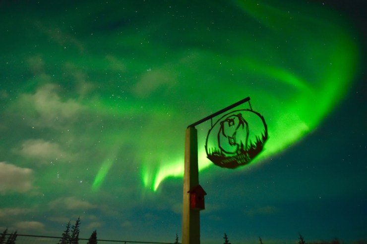 Northern lights over Nanuk Polar Bear Lodge.