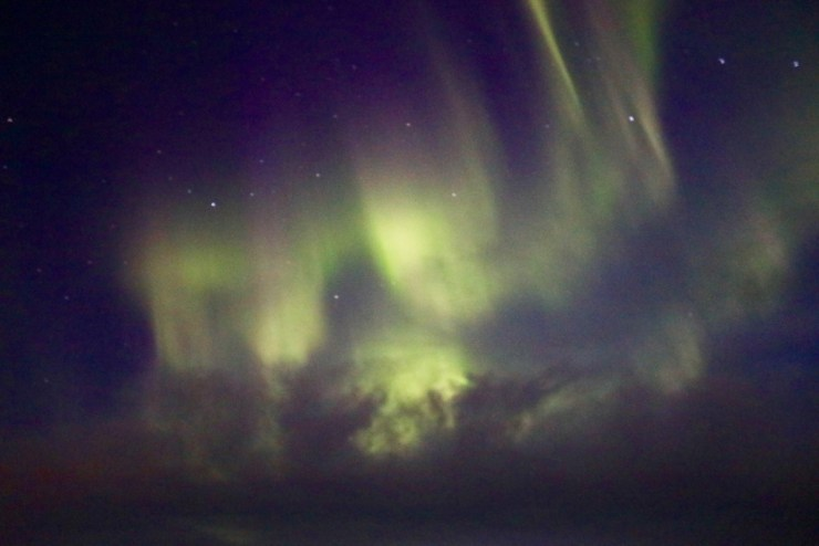 Aurora borealis puts on a show for guests on Birds, Bears and Belugas.