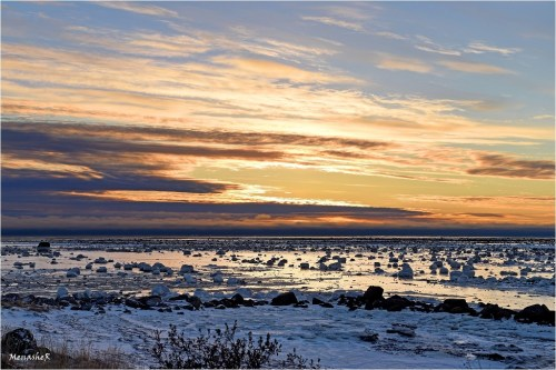 3rd Place (tie) - Landscapes - Menashe Rippel - Polar Bear Photo Safari
