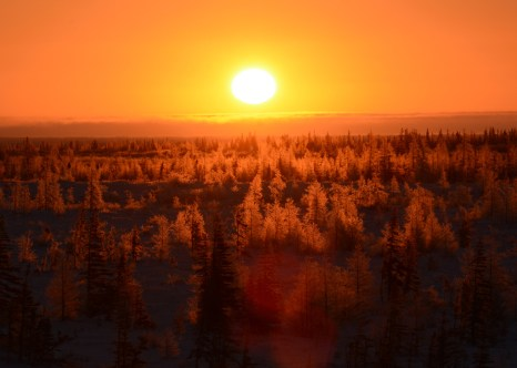 Sunset over boreal forest. Dymond Lake.