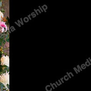 Flower arrangement Black Christian Worship Background. High quality worship images for use to spread the Gospel and enhance the worship experience.