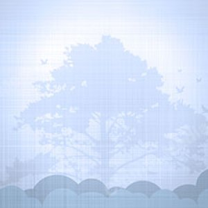 Tree of Life Christian Worship Background. High quality worship images for use to spread the Gospel and enhance the worship experience.