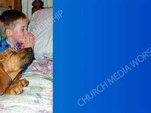 Bloodhound Praying blue Christian Background Images HD