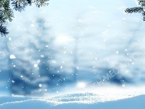 Snow Background with Pine Branches and Cones Christian Worship Background. High quality worship images for use to spread the Gospel and enhance the worship experience.