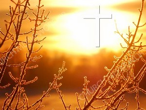 Jesus in Nature V25 Christian Worship Image. High quality worship images for use to spread the Gospel and enhance the worship experience.