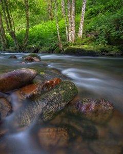 Large quartzite boulders in a river