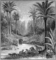Foster_Bible_Pictures_Garden_of_Eden