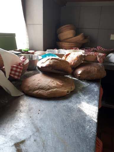 Brotbackaktion Brote2