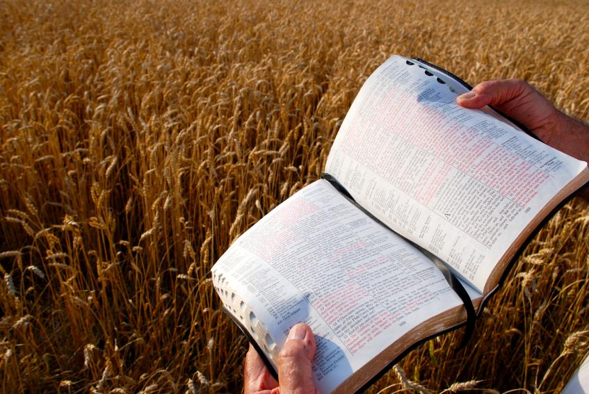 Return of the Evangelist