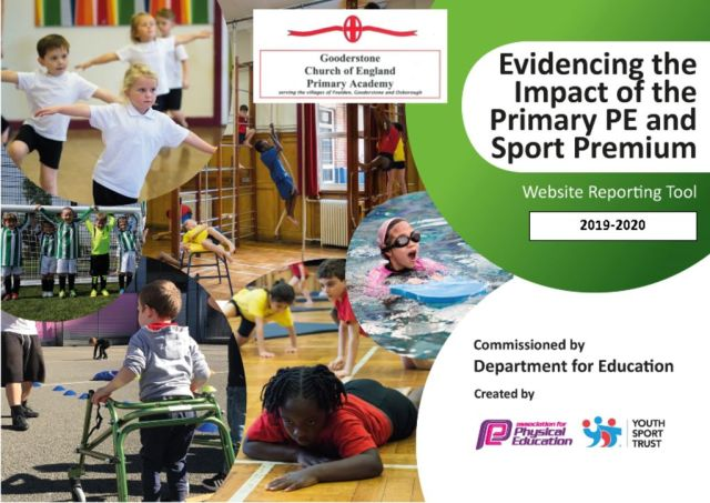 thumbnail of Primary Sports PE Premium 2019 good