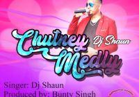 Dj Shaun Chutney Medley