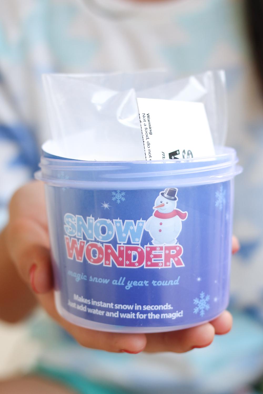 Snow Wonder India