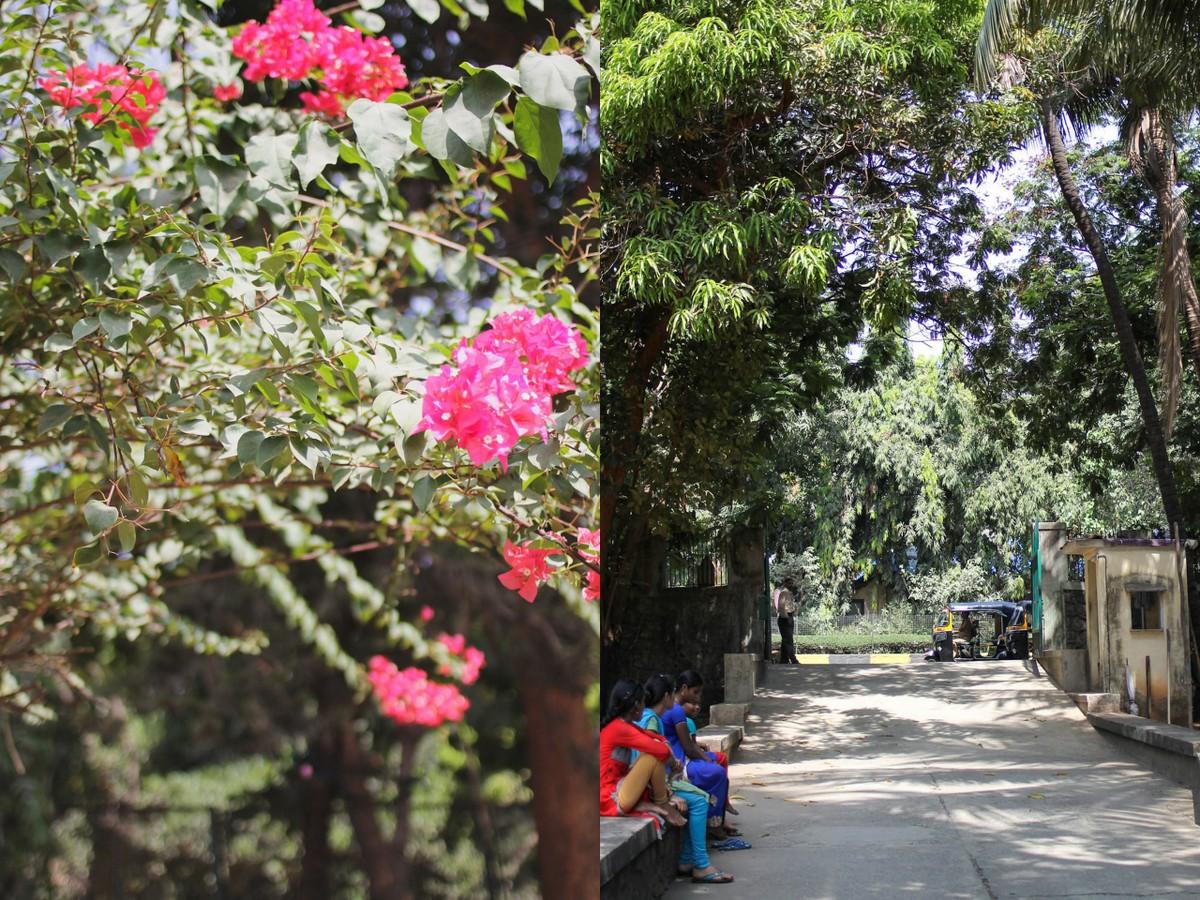 dilkhush-special-school-mumbai2