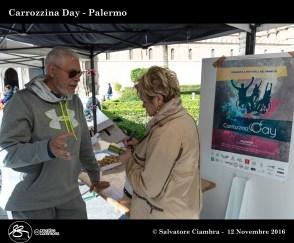 d8b_0402_bis_carrozzina_day