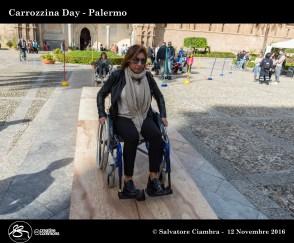 d8b_0466_bis_carrozzina_day