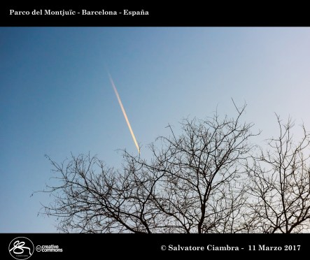 D8B_2673_bis_Barcelona_2017