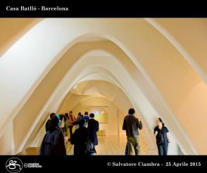 _D7C7558_bis_Casa_Batlló