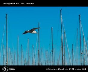 D8B_8690_bis_La_Cala_Palermo