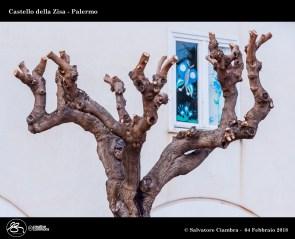 _D7D8630_bis_Castello_della_Zisa