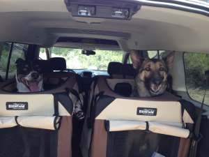 Going on a ride