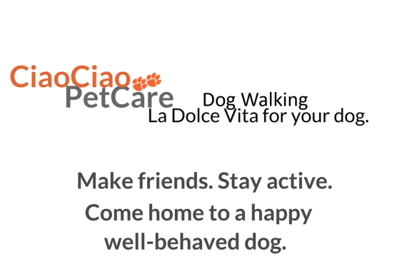 Dog Walking Services Irvine and Newport Beach by CiaoCiao PetCare.