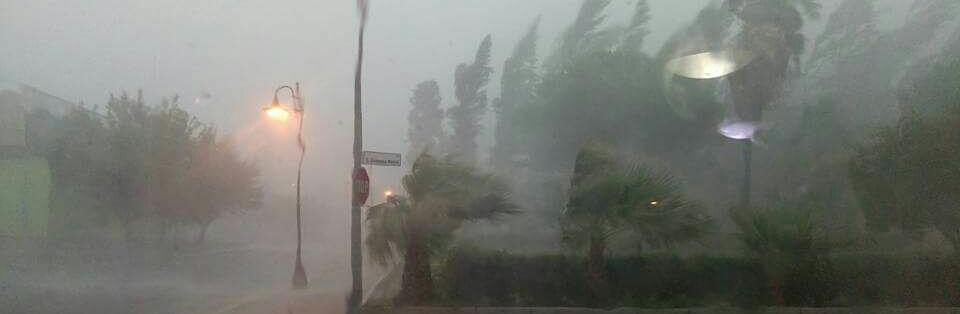 Crollo alberi – bloccata la strada per Caulonia superiore