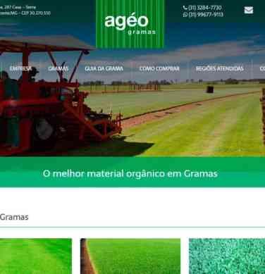Criação do site institucional, Otimização de Sites