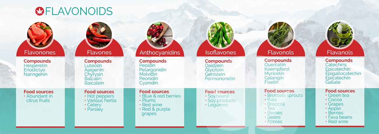 Examples of flavonoids
